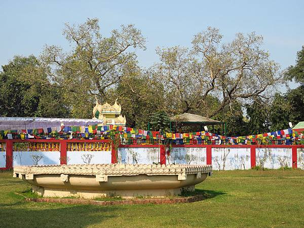 Sarnath e1.JPG