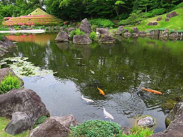 Shizuoka a1.JPG