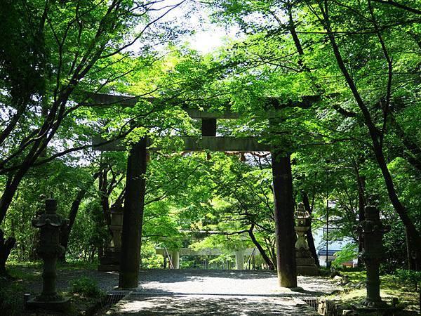 Kyoto fe6.JPG