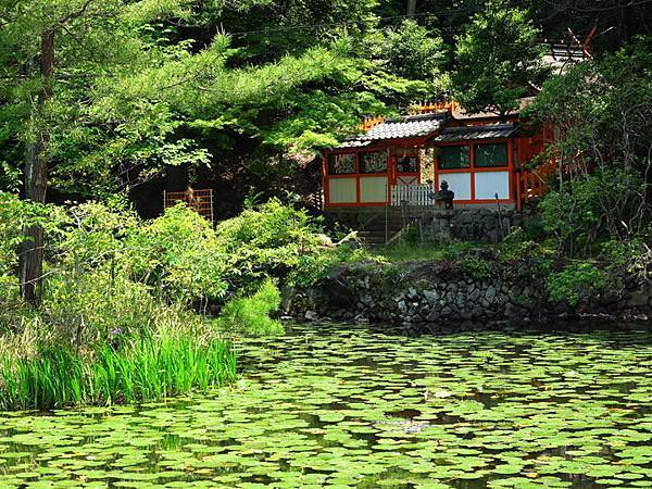 Kyoto ff2.JPG