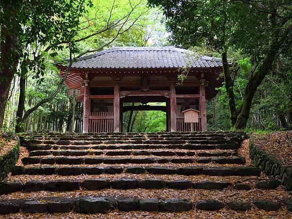 Kyoto fg1.JPG