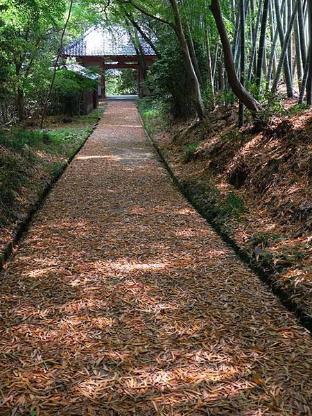 Kyoto fg2.JPG
