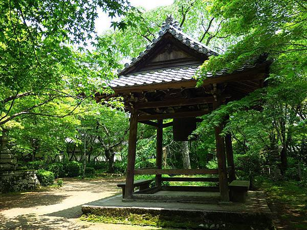 Kyoto fh5.JPG