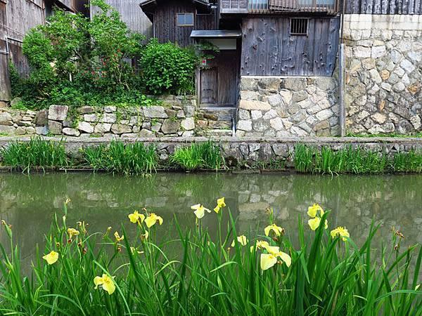 Kyoto fz16.JPG