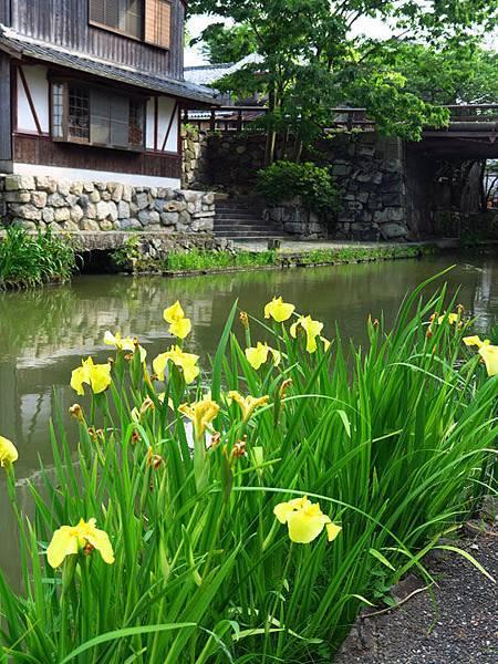 Kyoto fz20.JPG