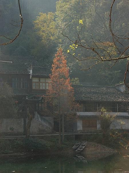 Fenghuang a7.JPG