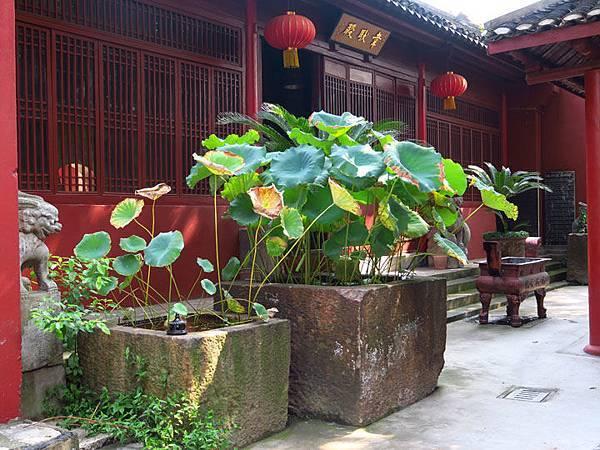 Jingzhou e1.JPG