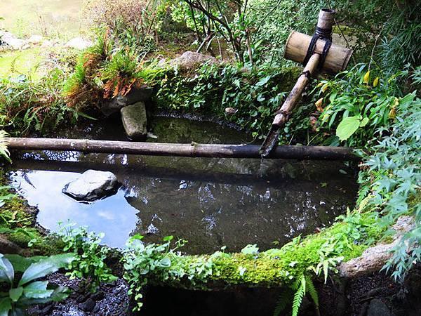 Kyoto gi3.JPG