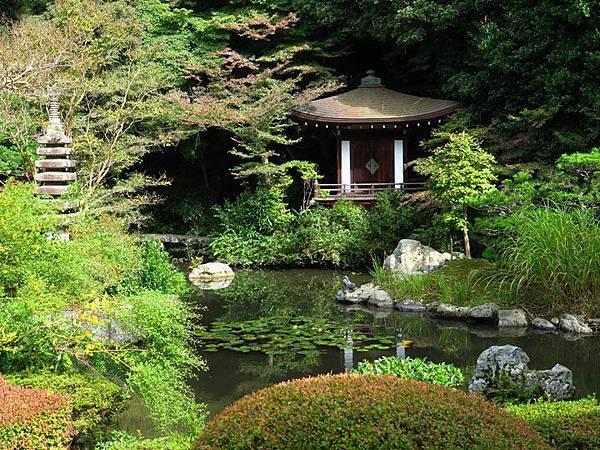 Kyoto gi2.JPG