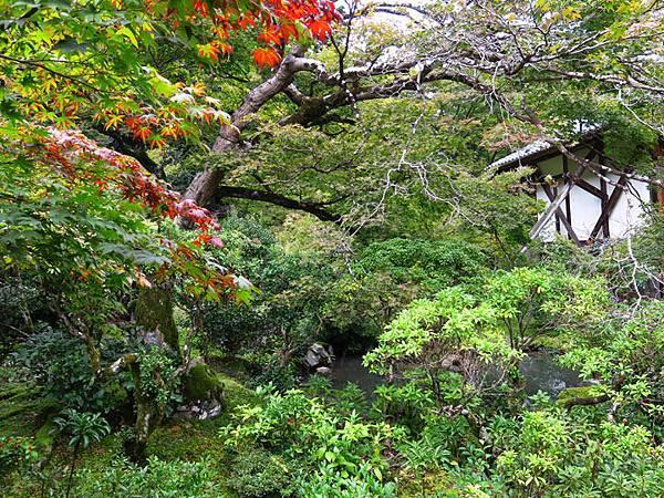 Kyoto gj7.JPG