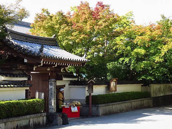Kyoto gt8.JPG