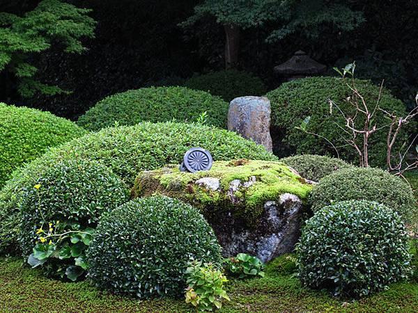 Kyoto gv5.JPG