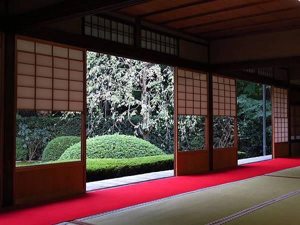 Kyoto gw6.JPG