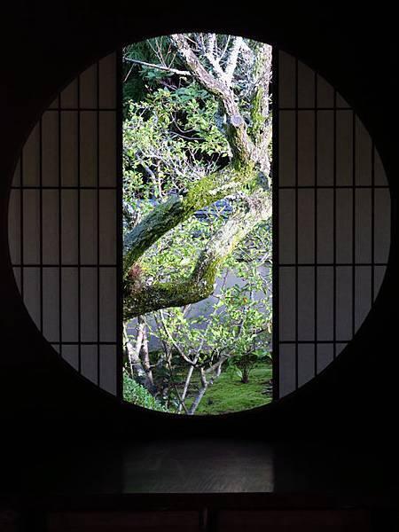 Kyoto gw9.JPG