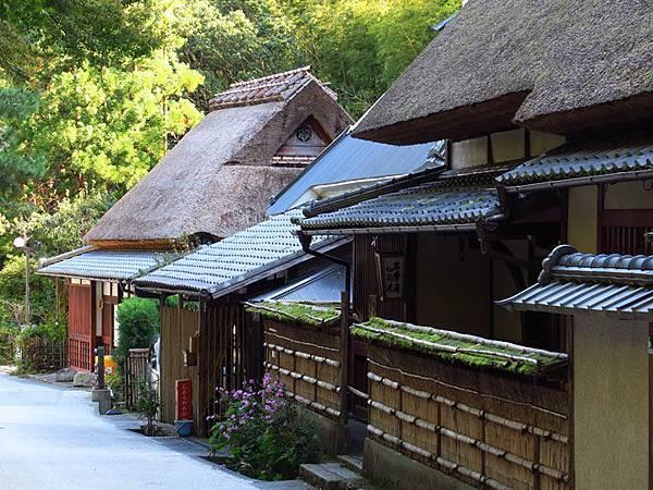 Kyoto ha2.JPG