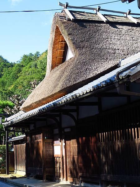Kyoto ha5.JPG