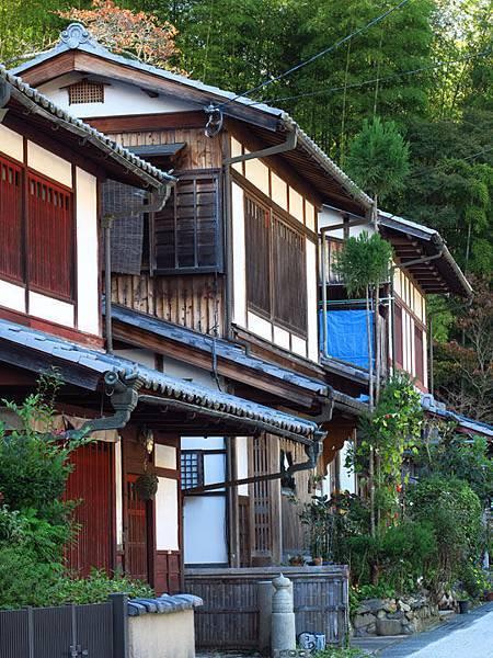 Kyoto hb2.JPG