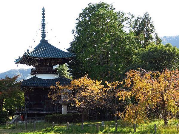 Kyoto hc1.JPG