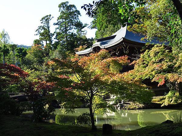 Kyoto hc2.JPG