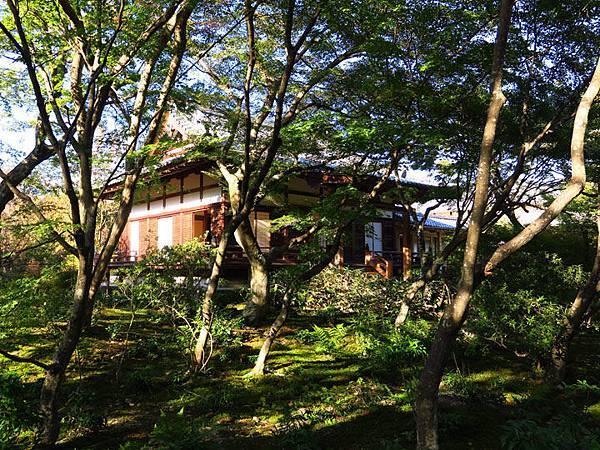 Kyoto hd1.JPG