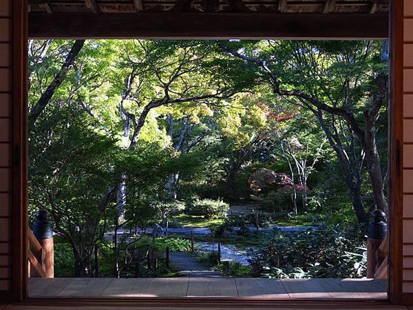 Kyoto hd3.JPG