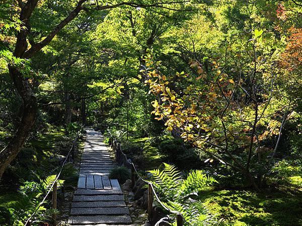 Kyoto hd6.JPG