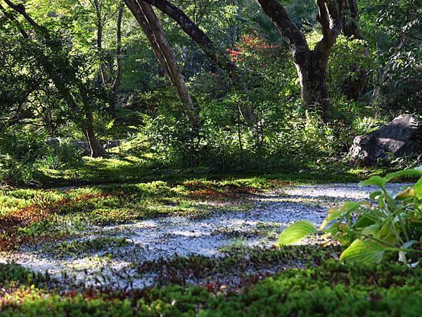 Kyoto hd7.JPG