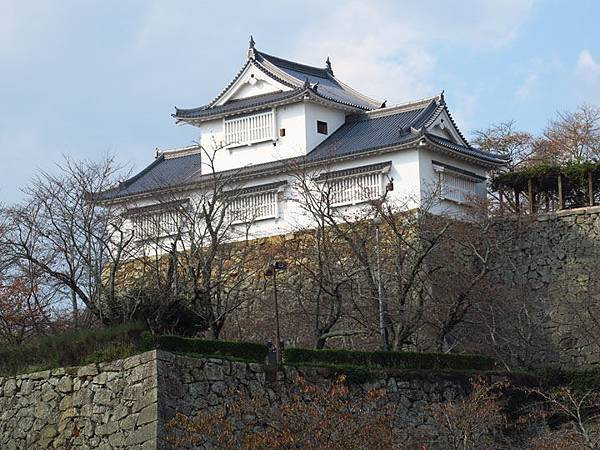 Tsuyama b1.JPG