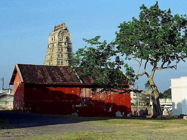 Mysore d1.JPG