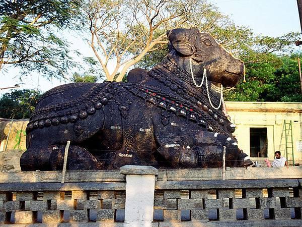 Mysore d3.JPG