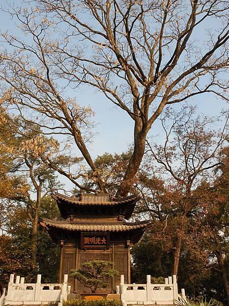 Kunming d6.jpg