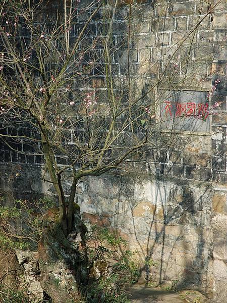 Kunming e4.jpg