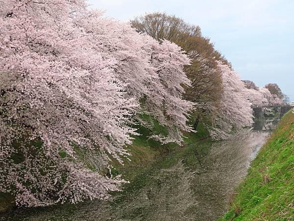Yamagata e1.JPG