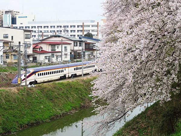 Yamagata e6.JPG