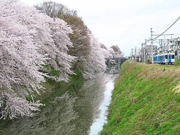 Yamagata e5.JPG