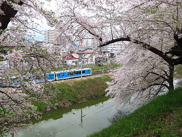 Yamagata e7.JPG