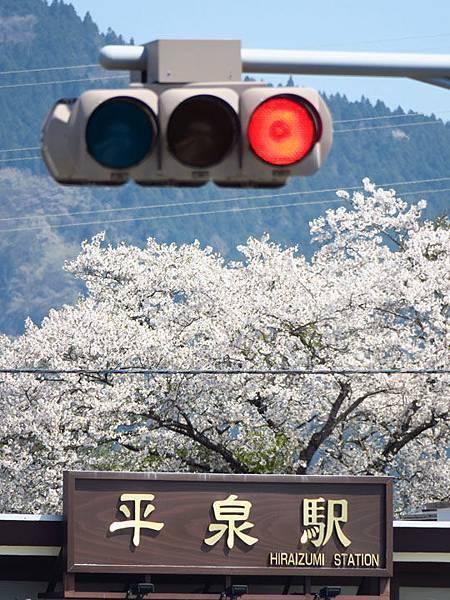 Hiraizumi n5.JPG
