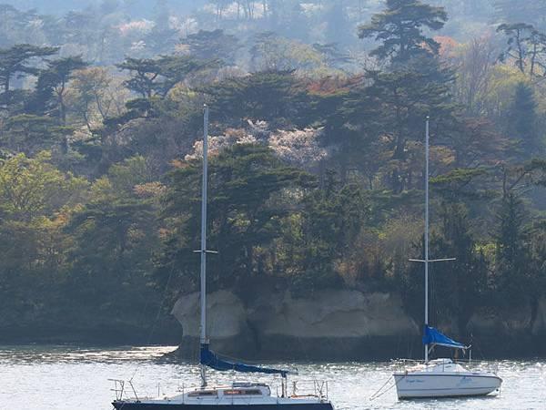 Matsushima g7.JPG