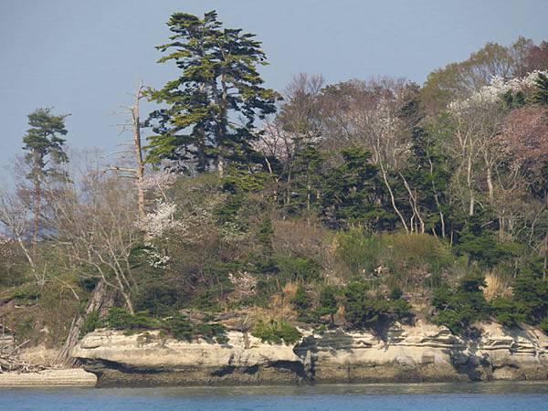Matsushima g8.JPG