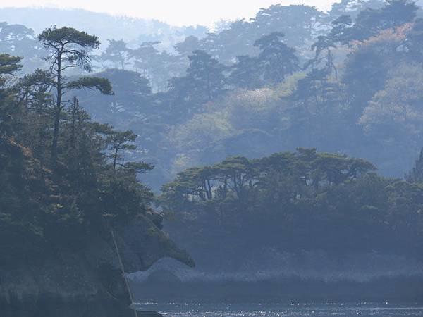 Matsushima g10.JPG