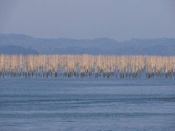 Matsushima h9.JPG