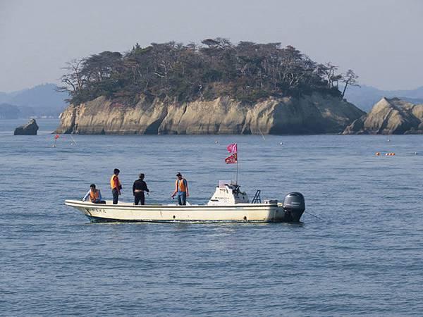 Matsushima h10.JPG