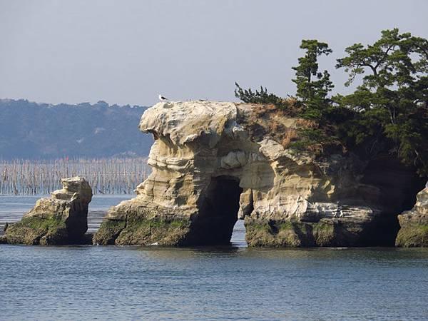 Matsushima i3.JPG