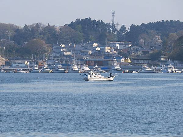 Matsushima j2.JPG