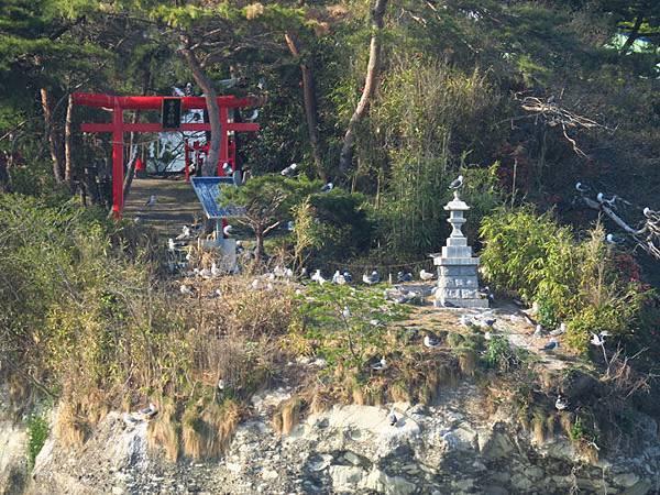 Matsushima j5.JPG