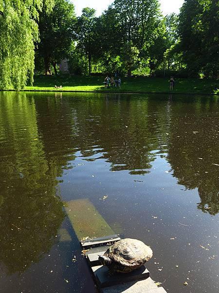 Groningen b9.JPG