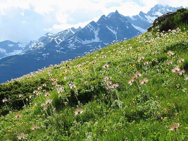 Zermatt e1.JPG