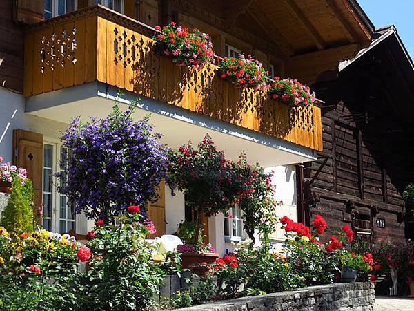 Grindelwald b3.JPG
