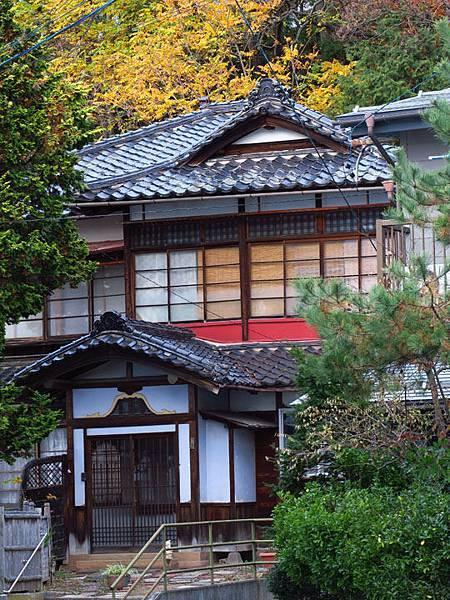 Yudanaka d9.JPG