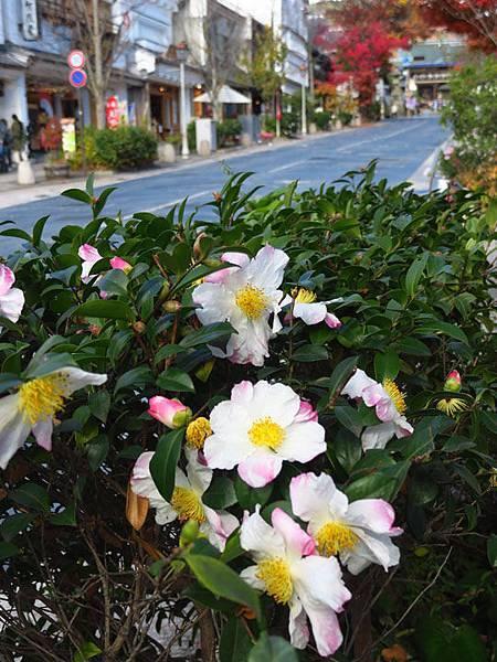 Nagano e2.JPG